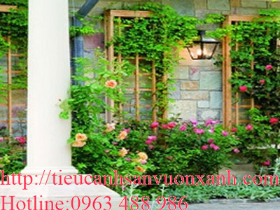 Cách làm vườn tường tô điểm cho ngôi nhà của bạn