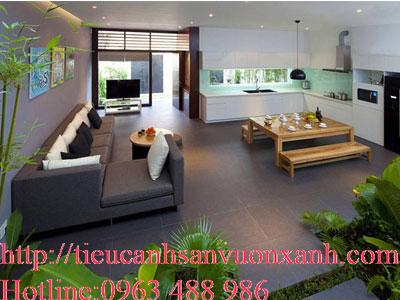 Những lợi ích tuyệt vời của cây xanh với ngôi nhà