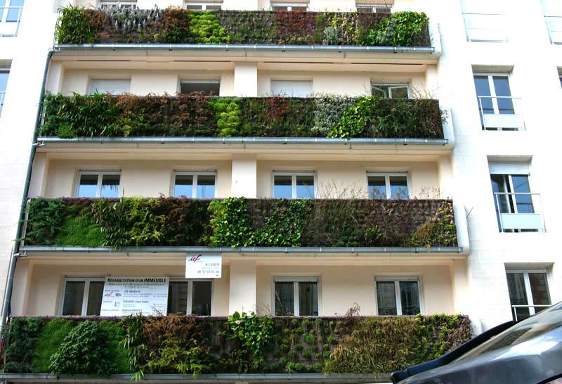 vườn tường đứng độc đáo cho những căn hộ liền kề