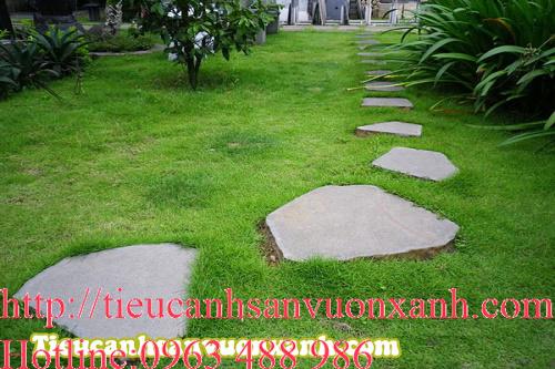 Mẫu đá lát sân vườn số 5