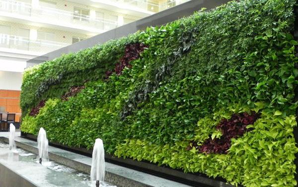 vườn tường đứng ngoài trời kết hợp với tiểu cảnh nước