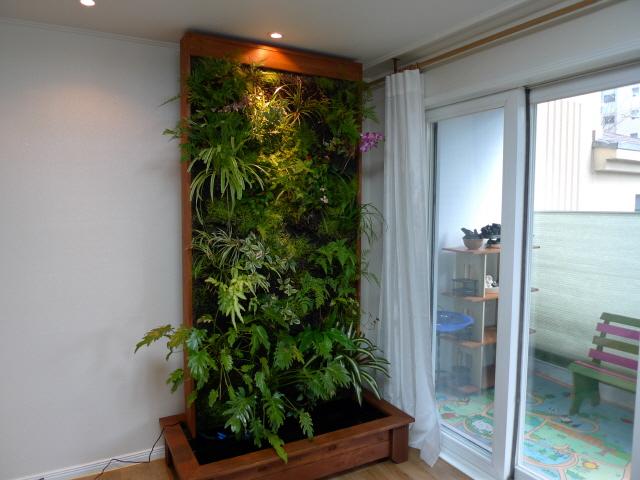 Vườn tường đứng trong nhà