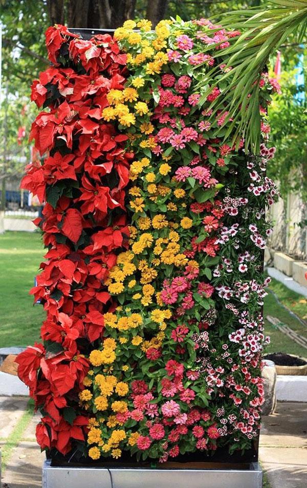 Tường hoa đứng