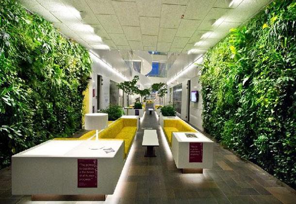 Vườn tường đứng văn phòng tươi xanh